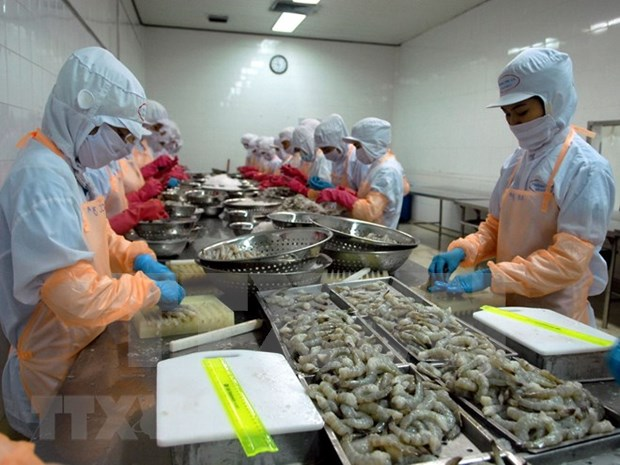 Crevettes : Le Canada, un marche d'exportation potentiel du Vietnam hinh anh 1