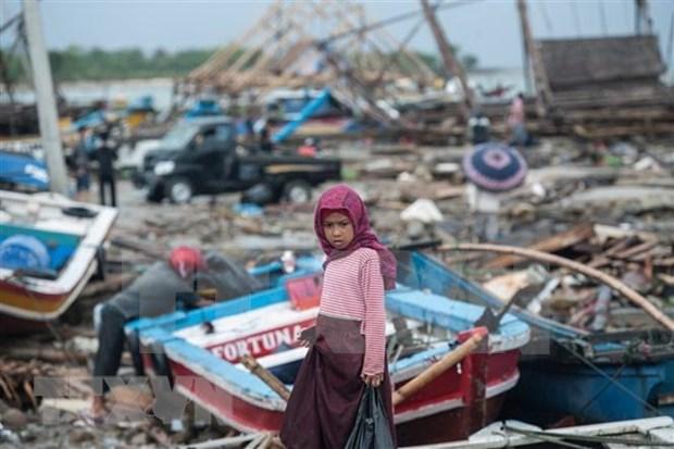 La Nouvelle-Zelande accorde un million de dollars au redressement indonesien apres le tsunami hinh anh 1