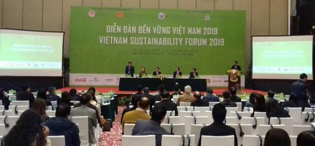 A propos du Forum du developpement durable du Vietnam 2019 hinh anh 1