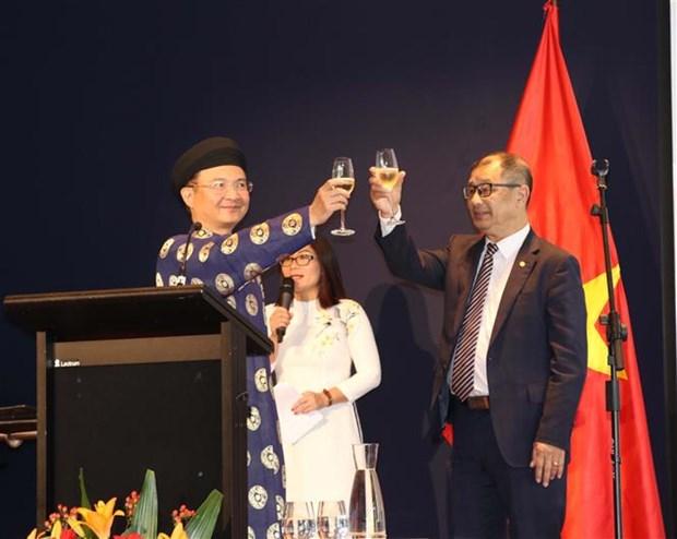 Les Vietnamiens d'Australie, du Canada et d'Arabie Saoudite celebrent le Tet du Cochon hinh anh 1