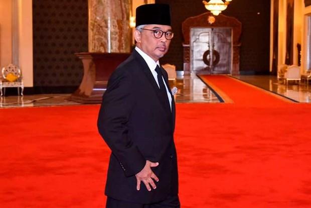 Felicitations au nouveau roi de Malaisie hinh anh 1