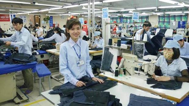 Une compagnie de confection vise a un chiffre d'affaires de plus de 3.200 mlds de dongs en 2019 hinh anh 1