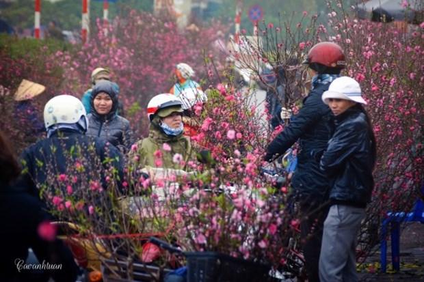 CNN : Le marche aux fleurs de Quang Ba, une destination a ne pas manquer a l'occasion du Tet hinh anh 1