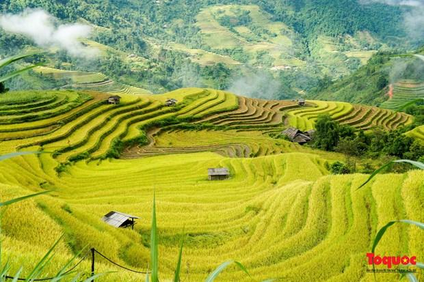 Le Vietnam parmi les destinations les plus impressionnantes hinh anh 1