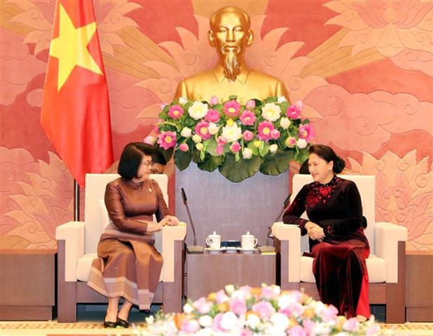 Vietnam-Cambodge : intensification des relations entre organes legislatifs hinh anh 1
