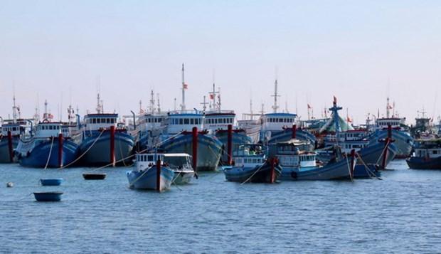 L'economie maritime contribue 10% du PIB national hinh anh 1