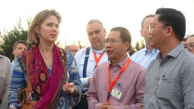 Des experts neerlandais proposent des mesures de lutte contre l'erosion du littoral a Hoi An hinh anh 1