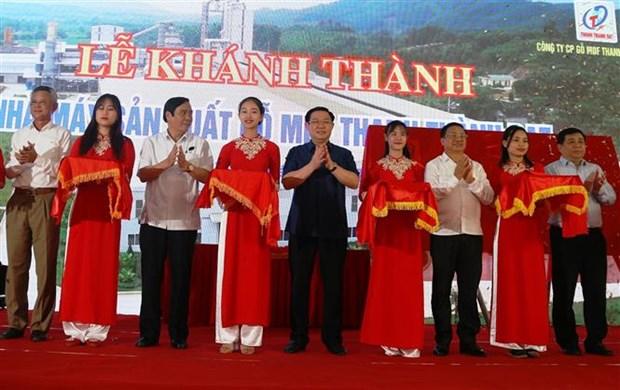 Ha Tinh : Inauguration de la plus grande usine de panneaux de fibres de bois au Centre hinh anh 1