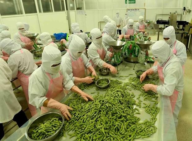 Les exportations d'An Giang en forte hausse en quatre mois hinh anh 1