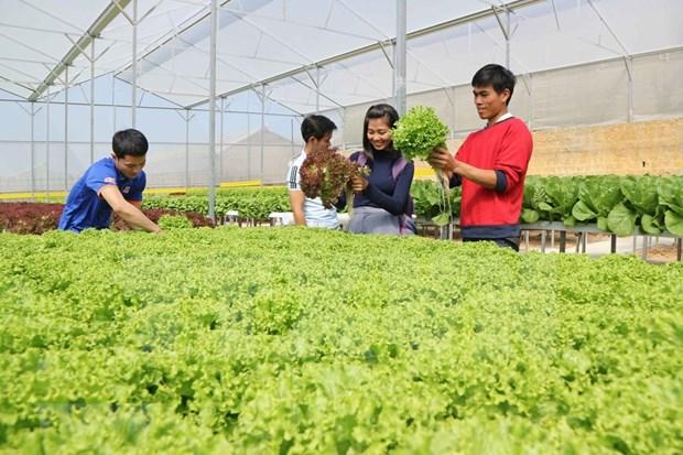 Pres de deux milliards de dollars d'APD accordes au secteur agricole ces 20 dernieres annees hinh anh 1