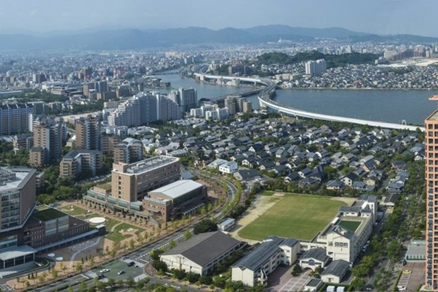 Preparation pour la creation d'une association des Vietnamiens a Fukuoka (Japon) hinh anh 1