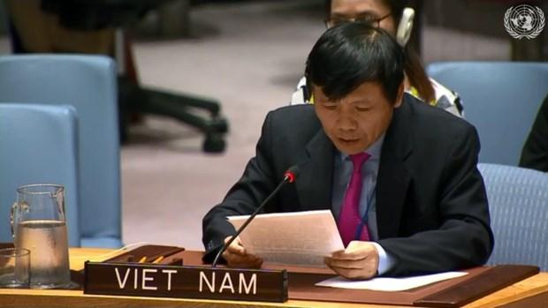 Le Vietnam contribue au developpement du Mouvement de non-alignement hinh anh 1