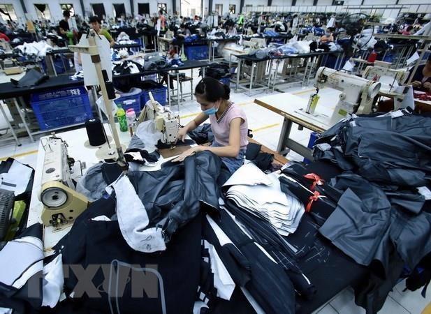 Cinq produits vises par une promotion des exportations vers l'UE hinh anh 1
