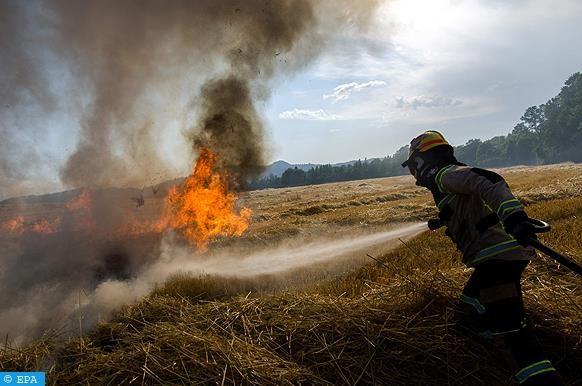 Feux de foret: pres de 19.000 points chauds localises en Asie du Sud-Est et en PNG hinh anh 1