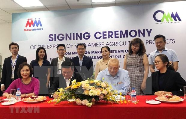 Promotion des exportations de produits agricoles vietnamiens vers Singapour hinh anh 1