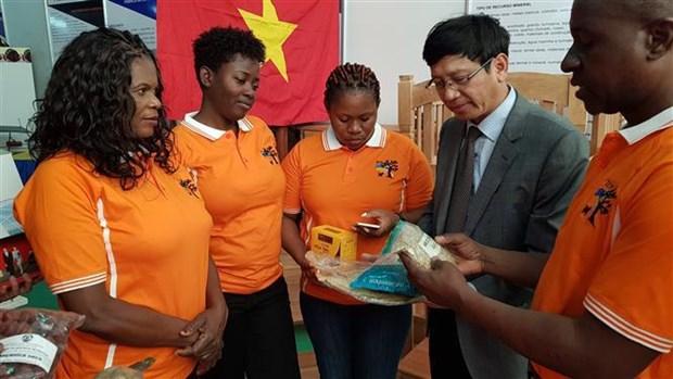Le Vietnam participe a la foire internationale FACIM 2019 au Mozambique hinh anh 1