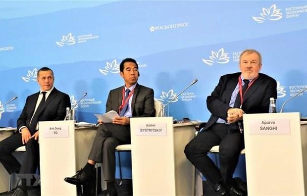 Le Vietnam au 5e Forum economique oriental a Vladivostok (Russie) hinh anh 1