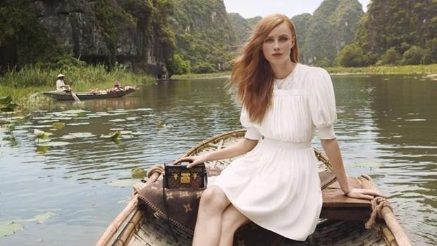 Le Vietnam cherche a collaborer avec des marques prestigieuses pour promouvoir le tourisme hinh anh 1
