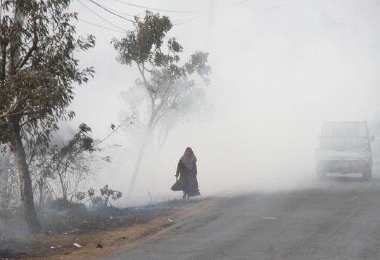 Indonesie: Plus de 39.000 personnes touchees par une brume de fumee hinh anh 1
