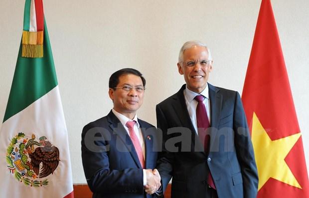 Vietnam-Mexique : La 5e consultation politique entre les ministeres des Affaires etrangeres hinh anh 1