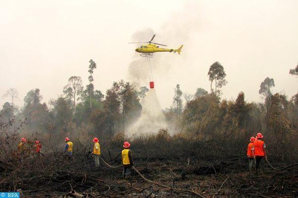 Les feux de foret en Indonesie etouffent la Malaisie et Singapour hinh anh 1