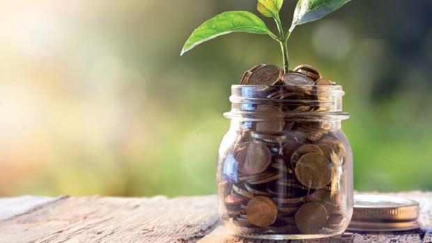 Ameliorer les capacites d'acces aux credits verts des petites et moyennes entreprises vietnamiennes hinh anh 1