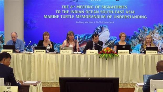 Conservation des tortues marines : la 8eme reunion des Etats signataires de l'IOSEA MoU a Da Nang hinh anh 1
