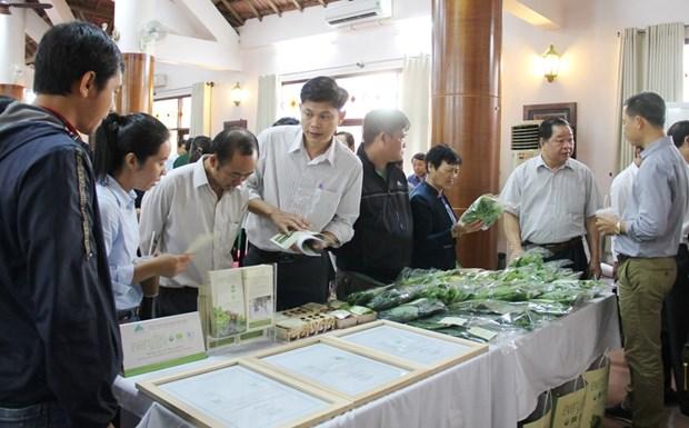 Vulgarisation des politiques sur l'agriculture biologique a Dak Lak hinh anh 1