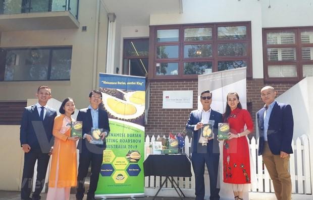 Une tournee de degustation de durian vietnamien en Australie hinh anh 1