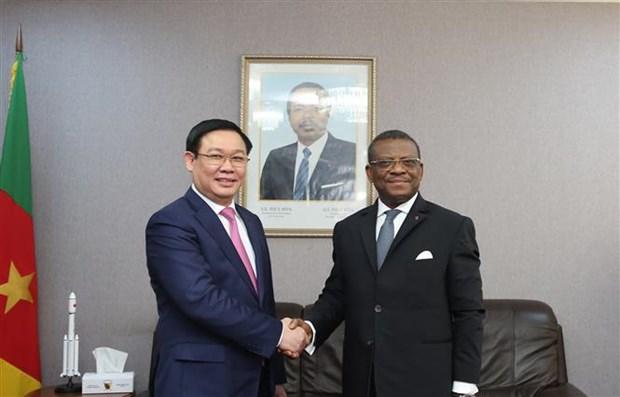 Le vice-Premier ministre Vuong Dinh Hue en visite de travail au Cameroun hinh anh 1