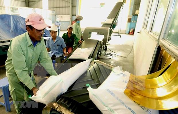 Riz: les exportations en dix mois en hausse en volume mais en recul en valeur hinh anh 1
