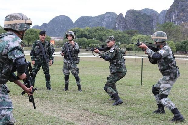 Cloture de l'exercice antiterroriste conjoint des pays de l'ADMM+ hinh anh 1