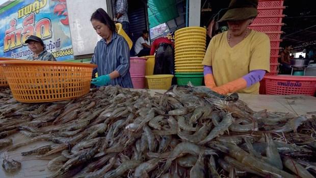 Thailande : les exportations de crevettes pourraient progresser de 20% l'an prochain hinh anh 1