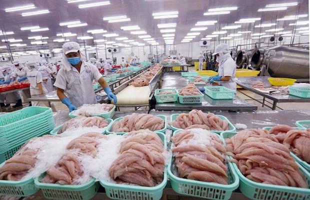 De belles perspectives des exportations de produits aquatiques vers la Chine hinh anh 1