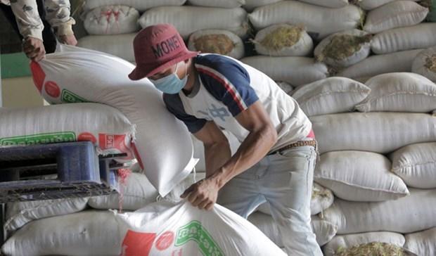 Le Cambodge exporte 7 millions de tonnes de produits agricoles en 2019 hinh anh 1