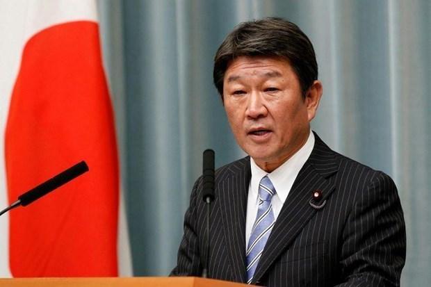 Le Japon souligne le role central de l'ASEAN dans la region hinh anh 1