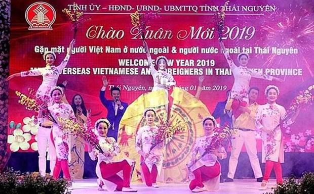 Rencontre printaniere avec les Viet kieu et les etrangers a Thai Nguyen hinh anh 1