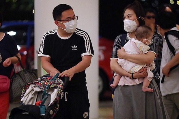 Singapour confirme le premier cas d'infection au nouveau coronavirus (nCoV) hinh anh 1