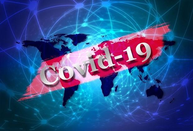 COVID-19 : le ministere de la Sante appelle a la vigilance face aux fausses informations hinh anh 1