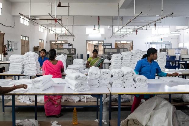 Le commerce Vietnam-Inde en hausse de 2% au cours des deux premiers mois hinh anh 1