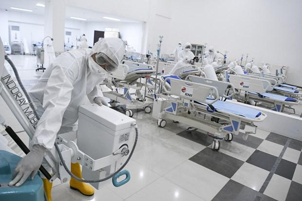 COVID-19: les Thailandais sont appeles a rester chez eux et l'Indonesie a besoin de plus de medecins hinh anh 1