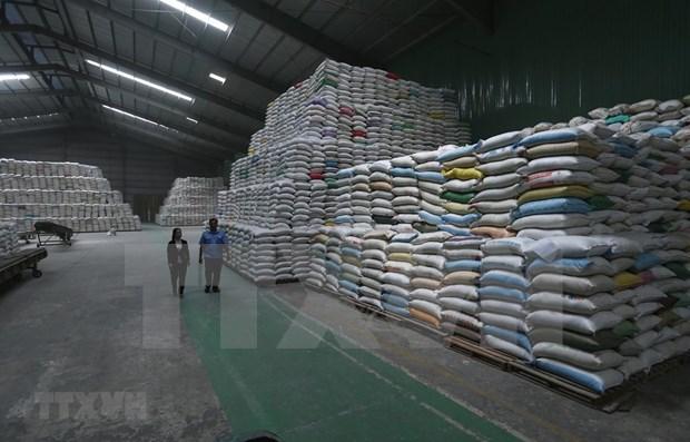 Les reserves alimentaires vietnamiennes assurent toujours une reponse d'urgence hinh anh 1
