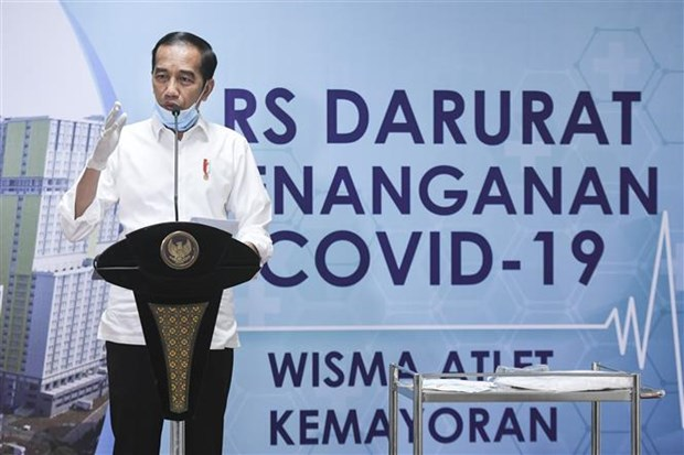 COVID-19 : l'Indonesie declare l'etat d'urgence sanitaire hinh anh 1