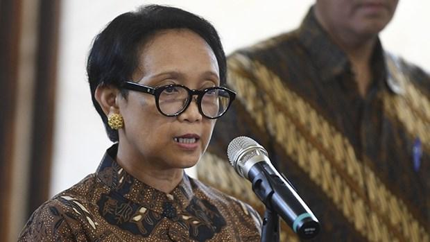 Le president indonesien participera a deux sommets speciaux de l'ASEAN hinh anh 1