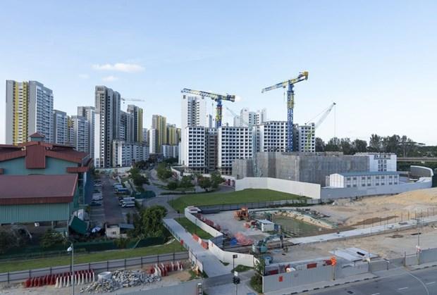 Citigroup: l'economie de Singapour devrait reculer de 8,5% cette annee hinh anh 1