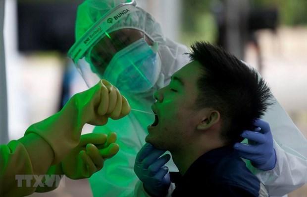 L'Indonesie signale 973 nouveaux cas de COVID-19, le plus grand saut quotidien hinh anh 1