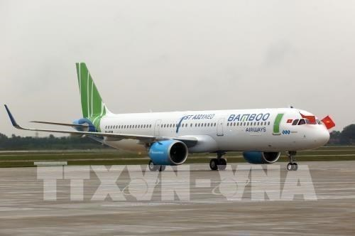 Bamboo Airways ouvre trois nouvelles lignes interieures hinh anh 1