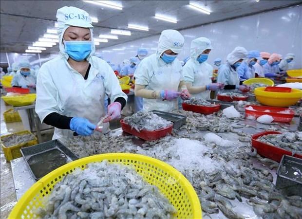 Le Vietnam et les Etats-Unis creent un nouvel elan pour le commerce bilateral hinh anh 1