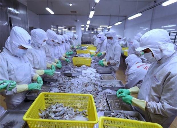 Les exportations de produits aquatiques en baisse de 10 % au premier semestre hinh anh 1