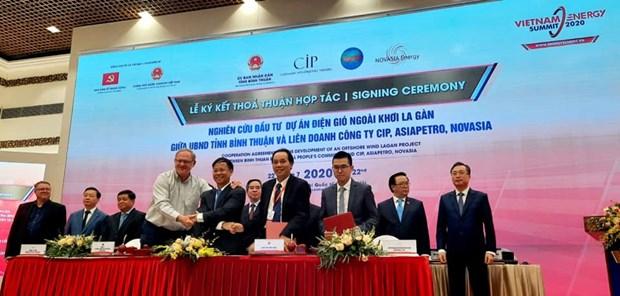 Le Vietnam et le Danemark cooperent dans l'energie eolienne offshore hinh anh 1